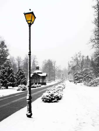 Landscape covered in snow with one street lamp photo