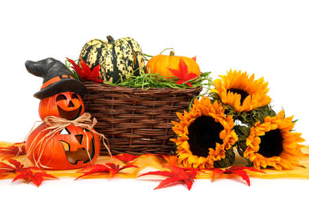 autumn halloween pumpkin harvest decoration with sunflowers on white background