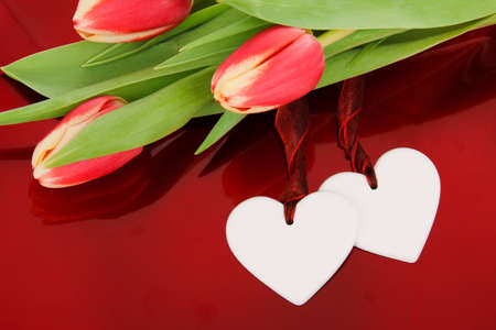 two hearts with colorful tulips on red background Stock Photo - 9117967