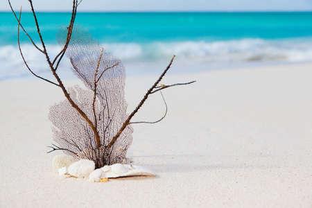 mer et de l'image concept de la plage Banque d'images