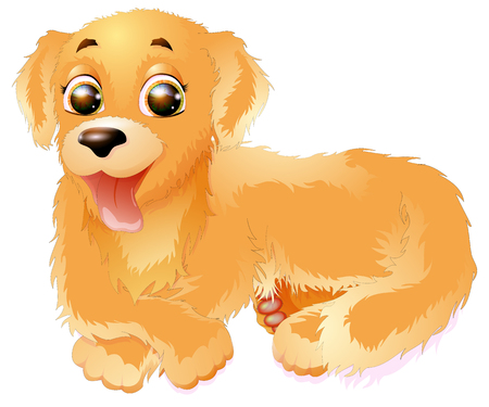 Golden Retriever vector illustration, isolated on white background.