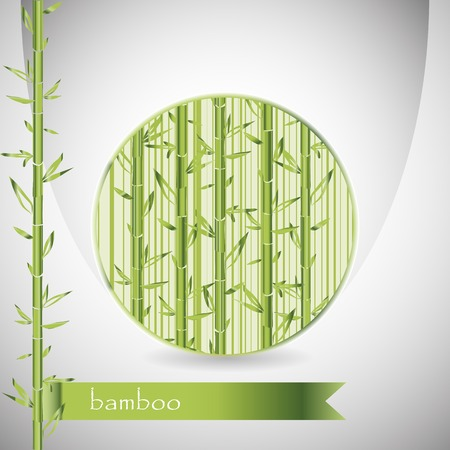 background with bamboo in circle and green ribbon. Use as a backdrop, greeting card. Plenty of space for text. Vector