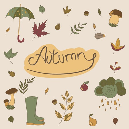 Autumn seasonal objects. Use to compose. Use for your design Vector