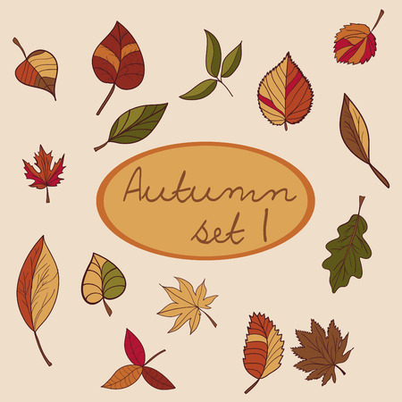 compile: Set of autumn leaves for your design. Used to compile the pattern or design. can be used for scrapbooking Illustration