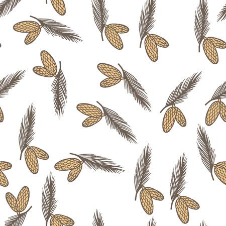 fir cone: Cono de pino abeto sin patr�n, ilustraci�n vectorial