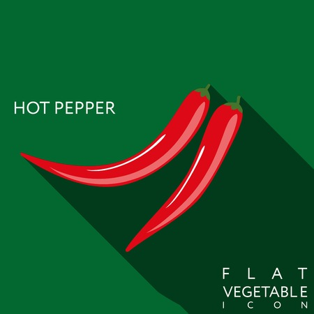 hot pepper: hot pepper flat icon with long shadow.