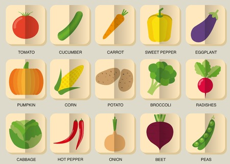 gherkin: vegetable flat icon set.