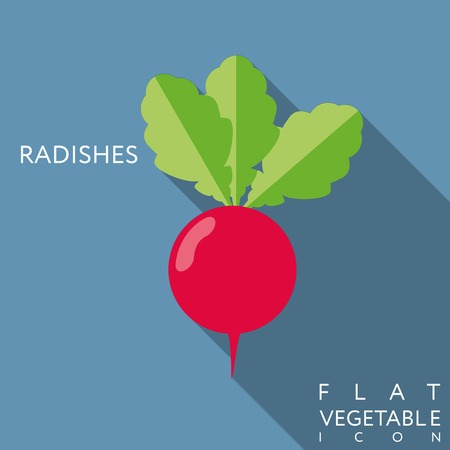 radish flat icon with long shadow.