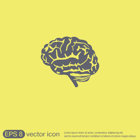 anatomy brain: Brain icon. Mind and science Illustration