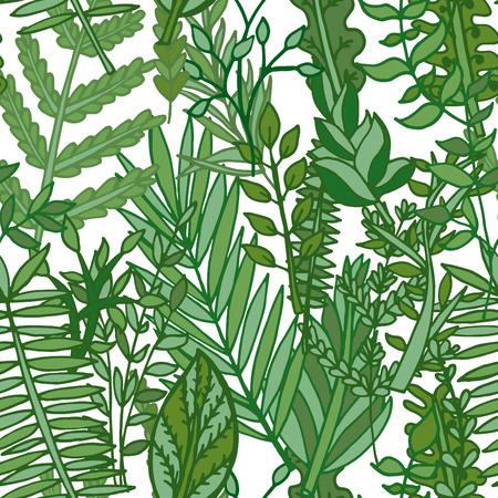 herbal pattern. hand drawn vector seamless illustration Vector