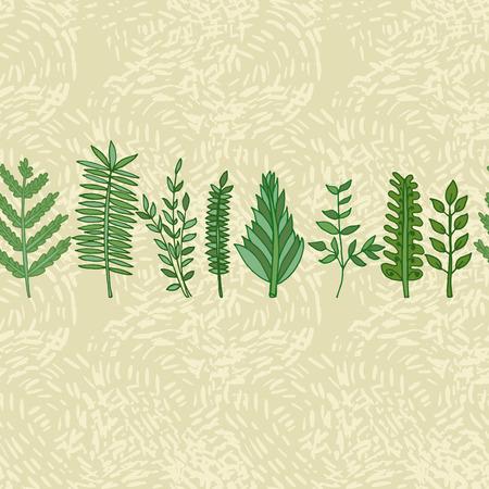 herbal border pattern. hand drawn vector seamless illustration Vector