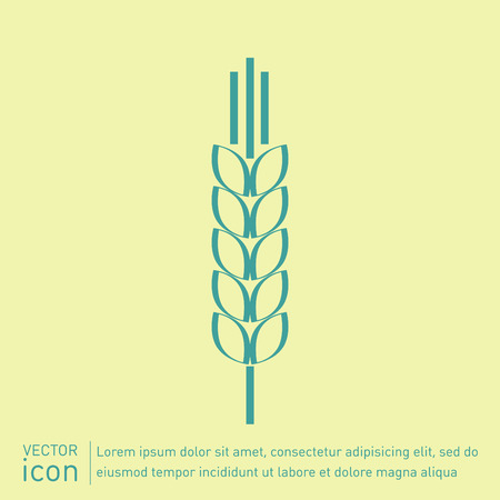 wheat isolated: wheat spike ears icon