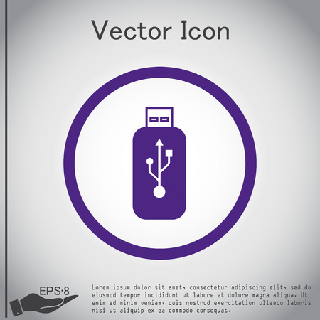 Vector usb flash icon disk