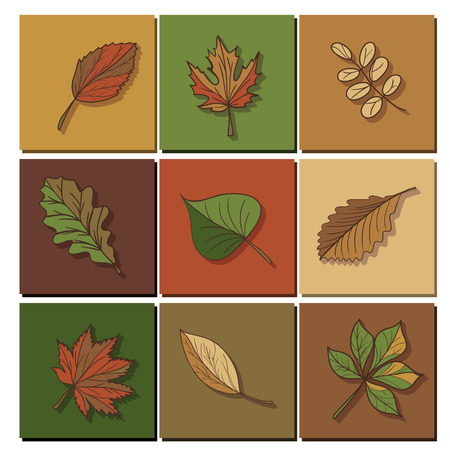 jaune rouge: leaves icon. Red, yellow and green leaves of forest trees. Are used as buttons for web design Illustration