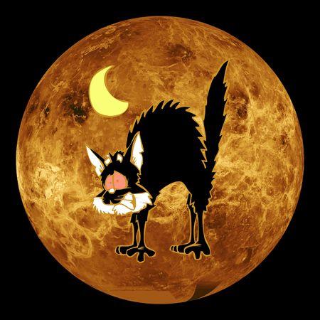 stressed cat on moon Stok Fotoğraf
