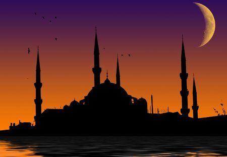 turkey bird: Islamic mosque