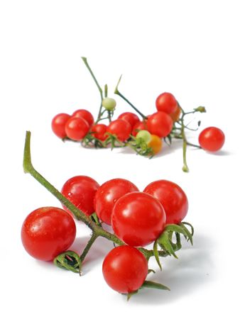 biologic: tomatoes cherry isolated on white background