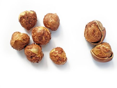 hazelnuts   Stock Photo - 3525463