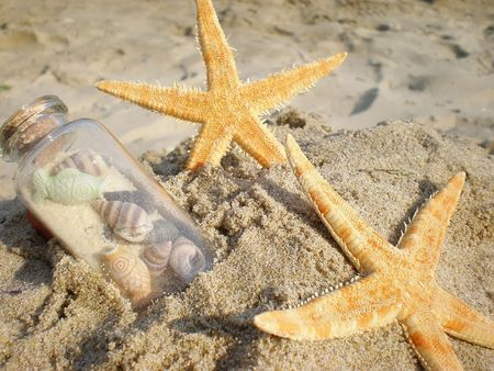 thalasso: sea shells and bottle in sand
