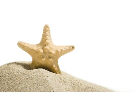 star fish and sand isolated on white background photo