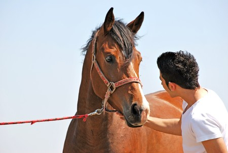 young and attractive man riding brown horse Standard-Bild