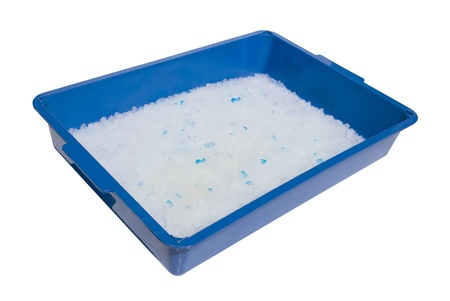 kittens blue litter box full of silicone absorbent substance