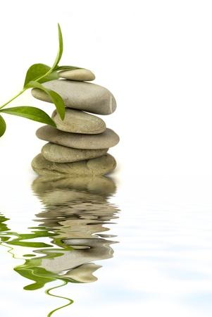 piedras de spa equilibrado con reflejo de agua y planta verde aisladas sobre fondo blanco