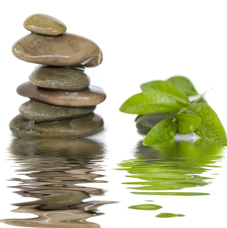 and simplicity: balanced spa stones with green plant and water reflection isolated on white background