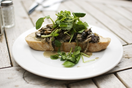 delicious mushrooms and green herb over slice of bread photo