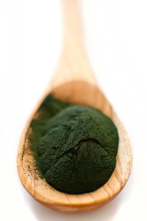 algae: organic spirulina algae powder in wooden spoon