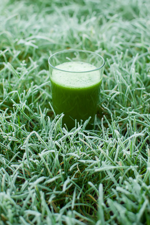 healthy organic green detox juice in a frozen grass