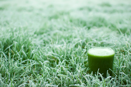 detox: healthy organic green detox juice in a frozen grass