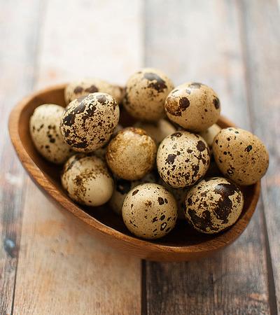 healthy fresh organic quail eggs