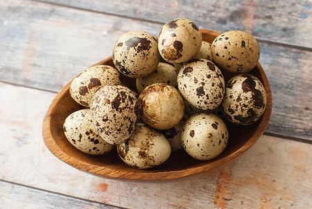 huevos de codorniz: huevos de codorniz orgánicos frescos saludables