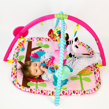 fascination: cute baby girld playing in an activity gym