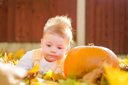 Cute baby girl with pumpkin in autumn garden covered with colorful autumn leaves