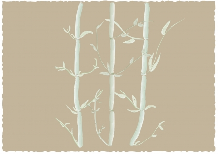 Vector illustration of Japanese bamboo in watercolor Illustration