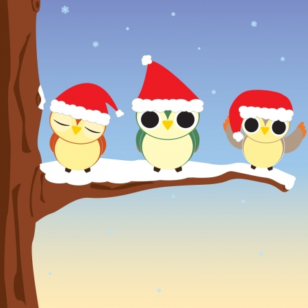 Vector illustration of three owls at Christmas