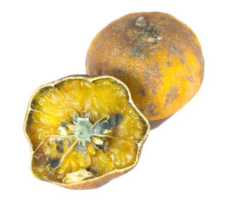 rotten orange isolated on white Stock Photo - 25865473