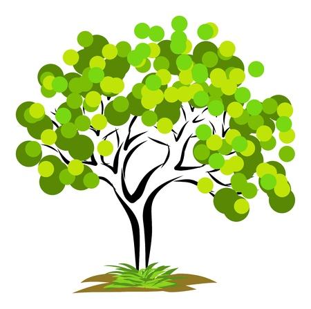 Big tree Illustration