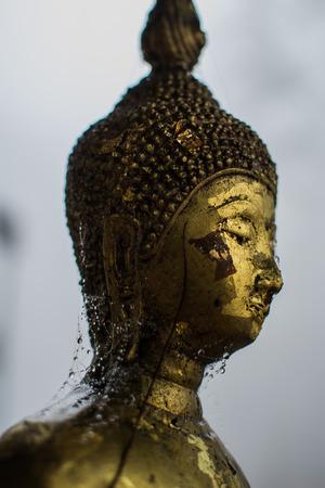 thai believe: The Buddha