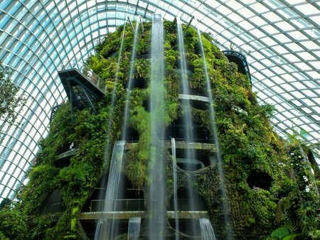 stay in the green: Indoor Waterfall