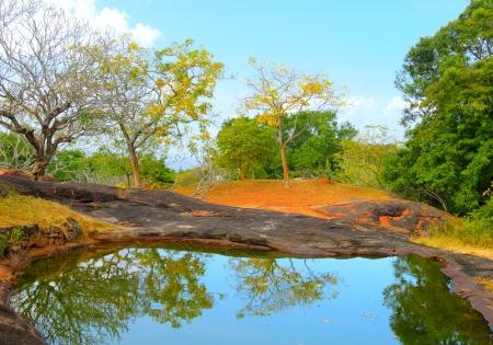Pond on the top of Yapahuwa Rock, Sri Lanka
