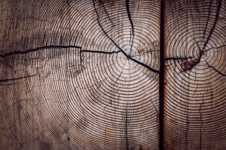 cross ties: Wood grain texture with detail Stock Photo