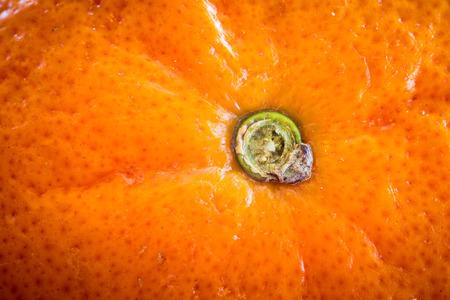 navel: Close-up of navel orange Stock Photo