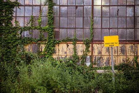 abandoned warehouse: Industrial exterior windows with overgrown vines and weeds