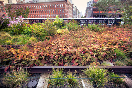 old new york: View of urban park on old railroad track at High Line Park in New York City