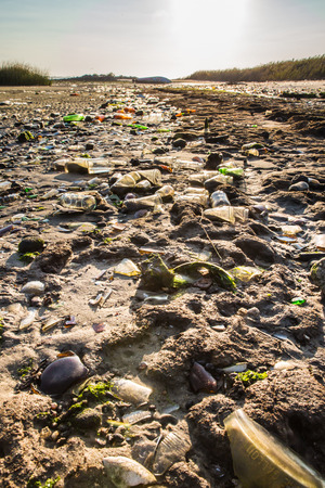 filth: Polluted beach covered in old glass bottles from landfill at Dead Horse Bay in Brooklyn NY