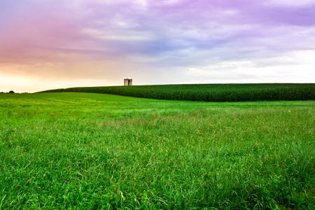 草、サイロ ・ サンセット、アーミッシュ カントリー、ペンシルバニア州ランカスターでトウモロコシと美しい圃場