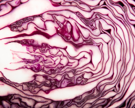 Red Cabbage cross section close-up detail Reklamní fotografie